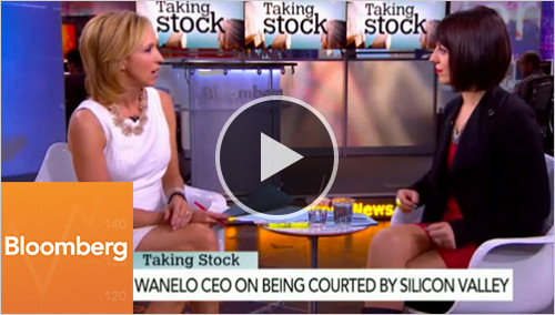 Wanelo press video bloomberg2